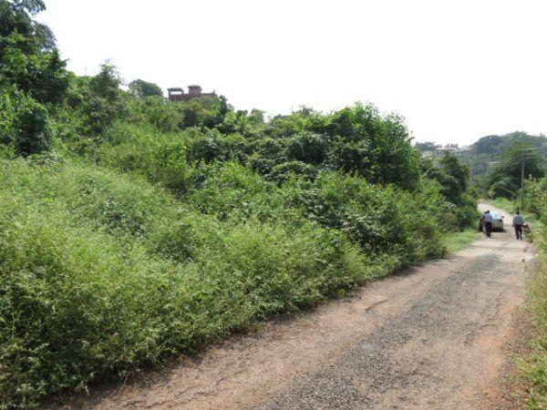 Goa Plots For Sale Plots In Goa Property In Goa