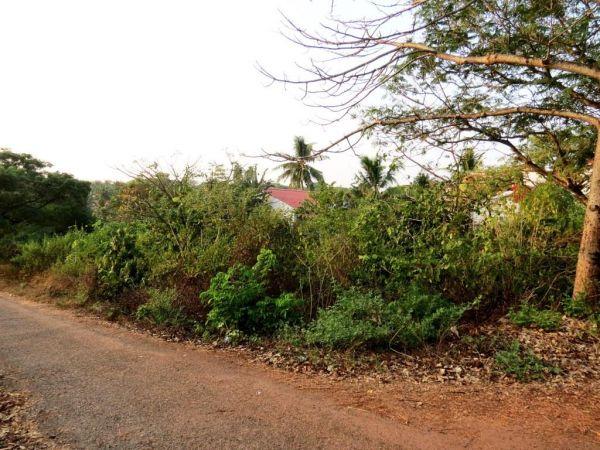 Plot For Sale In Goa Goa Plots For Sale