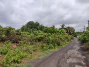 Plot and access road